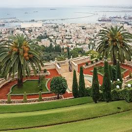 Bahá'í gardens by Mirko Ilić - City,  Street & Park  City Parks ( harbor, nature, green, sea, gardens,  )