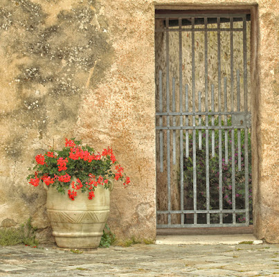door and flower di Allien