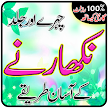 Skincare Tips in Urdu - Home Remedies Natural Tip APK
