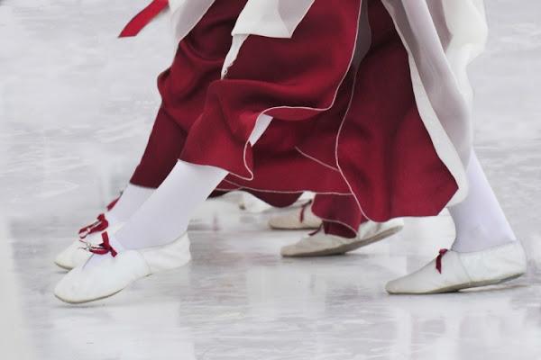 Leggiadri passi di danza... di AlfredoNegroni
