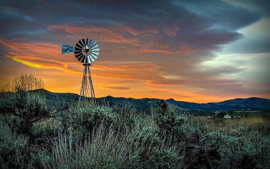 Sierra Valley Sunrise by Lee Molof - Landscapes Sunsets & Sunrises