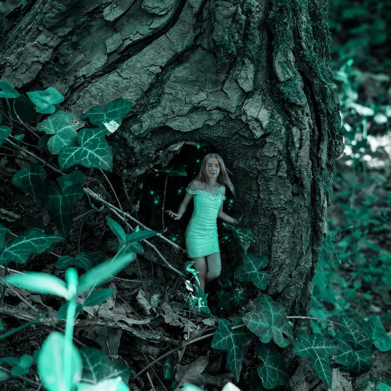 Alice In Wonderland di Monica L.