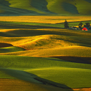 Palouse hills in the morning-3100px.jpg