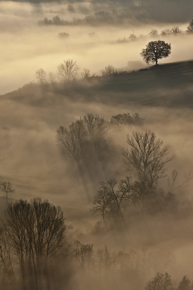 Risveglio d'autunno.. di stefanogaleotti