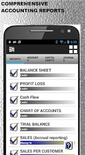 Small Business Accounting PRO- screenshot thumbnail