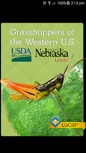 Grasshoppers of the Western US- screenshot thumbnail