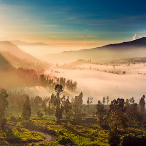 one fine morning by Eko Sumartopo - Landscapes Mountains & Hills