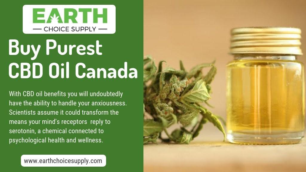 Buy Purest CBD Oil Canada