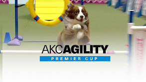 2021 AKC Premier Cup thumbnail