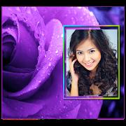 Purple Roses Photo Frames