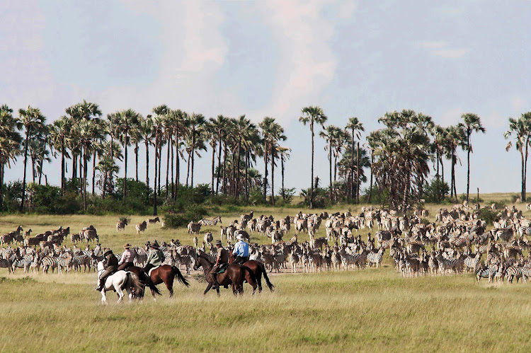 Horseriding safari at Jack's Camp