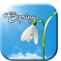 Sunny Spring Live Wallpaper