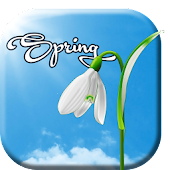 Sunny Spring Live Wallpaper