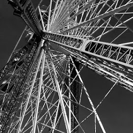 Ferriswheel  by Kristina Denney - Black & White Buildings & Architecture ( ferriswheel )