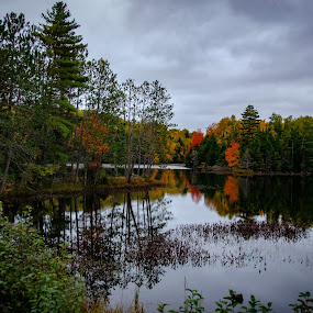 Small NE Wisconsin lake Fall 2018 by Michael Haagen - Landscapes Forests ( fall colors, fall, reflection, clouds, lake,  )