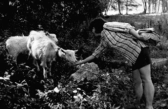 Photo: Święta Lipka 1987 jezuickie kozy
