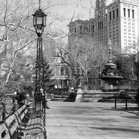 New York by Helen Jamieson - City,  Street & Park  City Parks