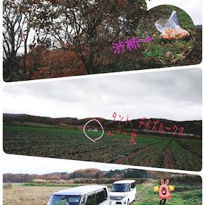タント L360S 18年のカスタム事例画像 ayatanto5555゚+.*ʚ♡ɞ*.+゚さんの2018年11月10日22:17の投稿