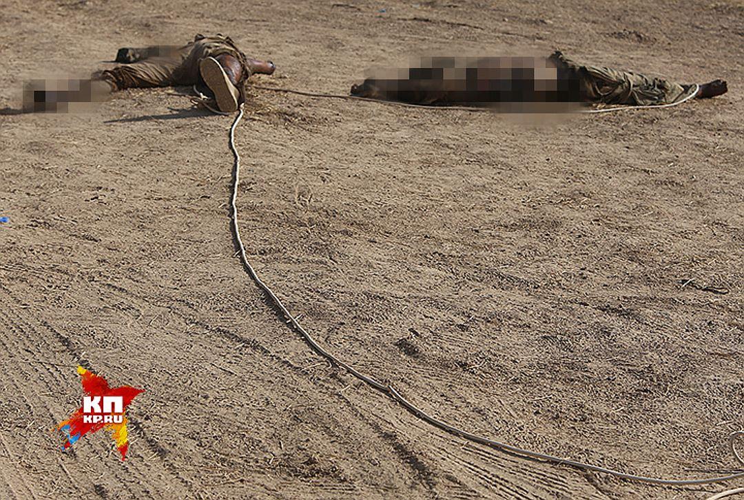 Трупы боевиков ИГИЛ (организация запрещена в РФ). Фото: Александр КОЦ, Дмитрий СТЕШИН