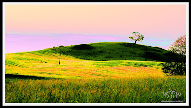 Photo: Corn fields and red poppies (evening sky over the rolling hills)  http://goo.gl/ITvFrA
