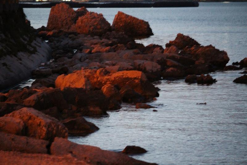 Scogli al tramonto di Photolo