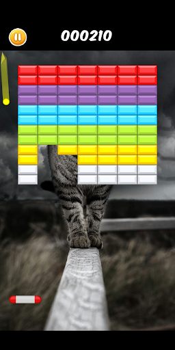 Breakout Cats  screenshots 1