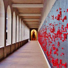 Not Forgotten by Megan Whitehead - Buildings & Architecture Statues & Monuments ( statue, memorial, australia, architecture )