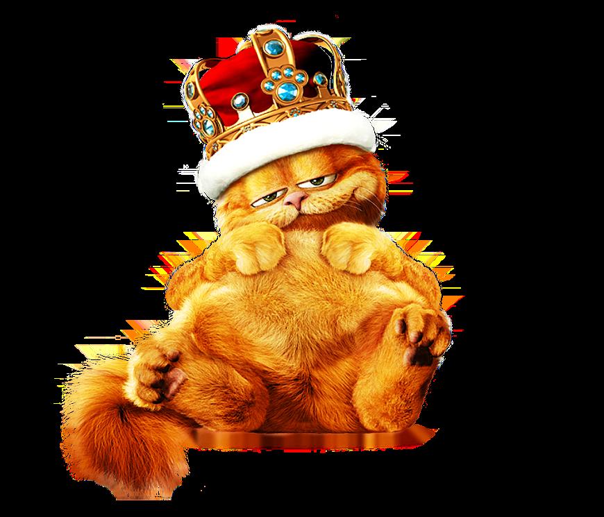 Garfield King oZ5Y8-omctddjoD5pGkb