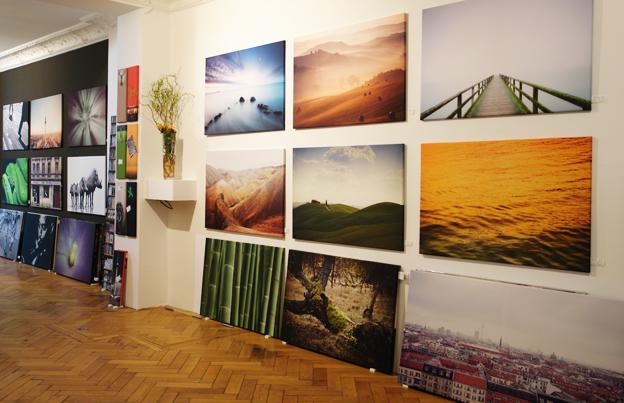 Meist nach Größen geordnet zeigen wir auch viele neue Motive unserer Fotografen