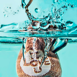 I love you by Soyam Chhatrapati - Artistic Objects Other Objects ( high speed photography, splash photography )