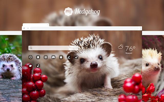 My Hedgehog HD Wallpapers New Tab Theme
