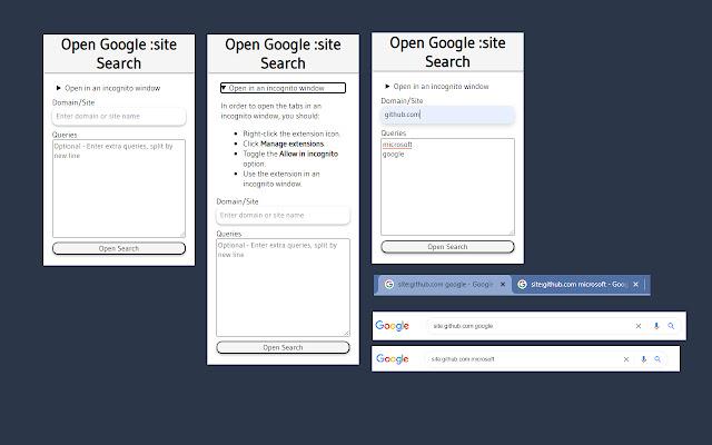 Open Google :site Search