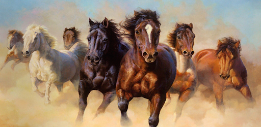 Horse wallpapers hd apps on google play thecheapjerseys Choice Image
