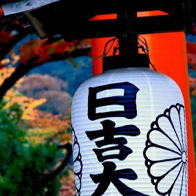 hiyoshi taisha by Joena Belajar - News & Events World Events