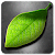 Fresh Leaves file APK Free for PC, smart TV Download