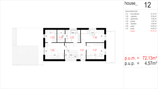 House 12 - Rzut poddasza