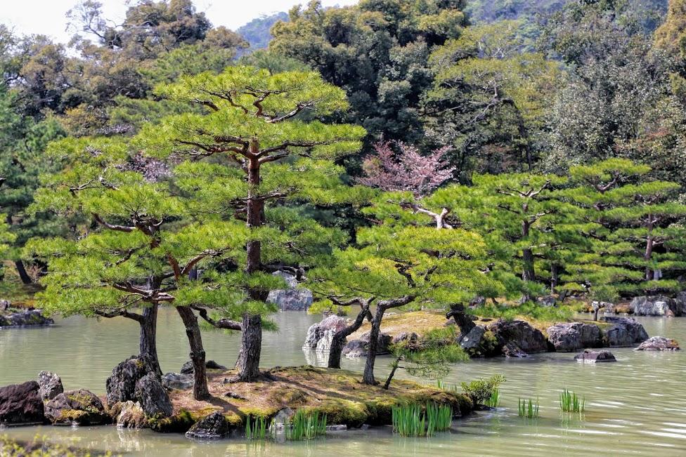 atrakcje Kioto, Złoty Pawilon, Kinkaku-ji, Kioto