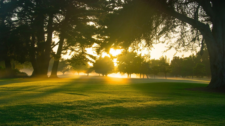 Watch My Golf Journey: A Celebration of PGA Professionals live