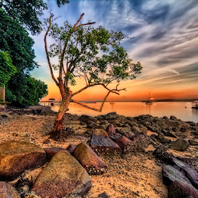 by Partha Roy - Landscapes Sunsets & Sunrises