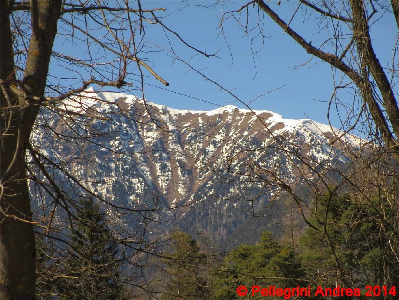 Photo: IMG_7077 una montagna smembrata dalle valanghe