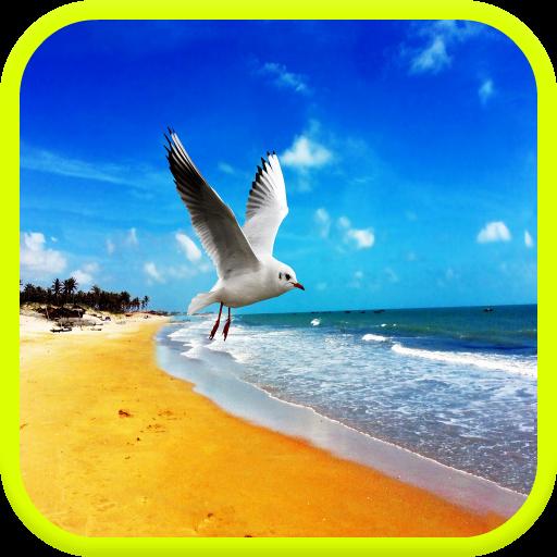 爱海海洋壁纸 攝影 LOGO-玩APPs