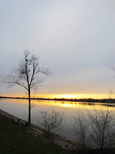 Photo: Balloons stuck in a tree overlooking a gold and silver lake sunset at Eastwood Park in Dayton, Ohio.