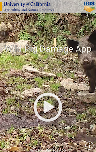 Wild Pig Damage- screenshot thumbnail