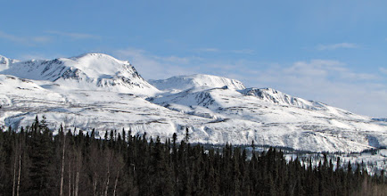 Photo: Denali State Park (Little Coal Creek)