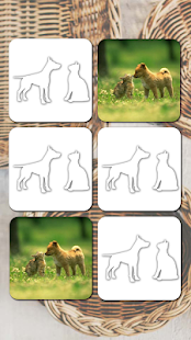 Game Cats And Dogs Games APK for Windows Phone
