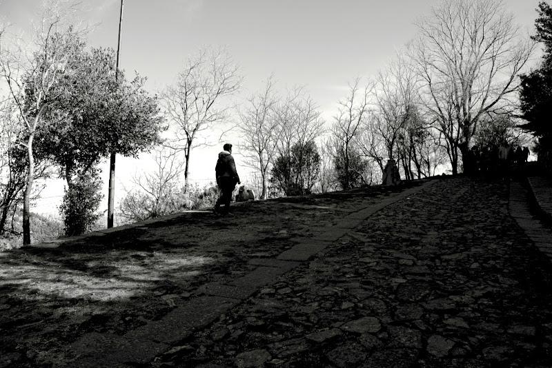 passeggiata  di ariosa