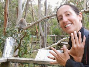 Photo: Phillip Island avec les koalas(Australie)