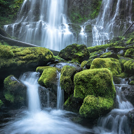 Proxy  by Brock Slinger - Landscapes Waterscapes