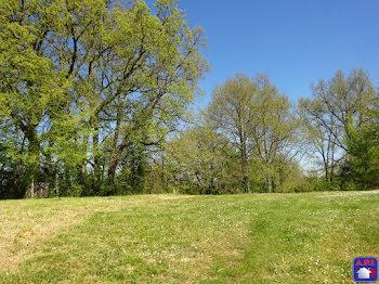 terrain à Saint-Bauzeil (09)