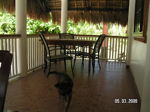 Photo: Terrace , AABANA Beach- and Watersport Resort Malapascua, Mike & Diose´s Beachcottage. Cottage CASABLANCA , Terrace, +63 905 263 2914-2915, www.malapascua.de Email: office@malapascua.de